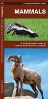 Mammals : An Introduction to Familiar North American Species