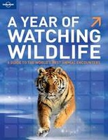 A year of watching wildlife | Lonely PLanet