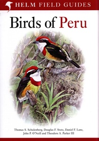 Vogelgids Peru - Birds of Peru | Bloomsbury