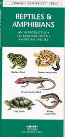 Natuurgids ReptilesAmphibians USA | Waterford Press