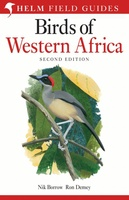 Birds of western Africa - west Afrika