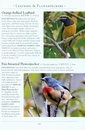 Vogelgids a Naturalist's guide to the Birds of Hong Kong | John Beaufoy