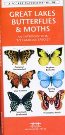 Natuurgids Great Lakes Butterflies & Moths | Waterford Press