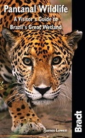Pantanal - a visitor's guide to Brazil's Great Wetland - Brazilië