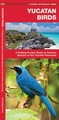 Vogelgids Yucatan Birds - Mexico | Waterford Press