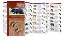 Natuurgids Animal Tracks North America  | Waterford Press
