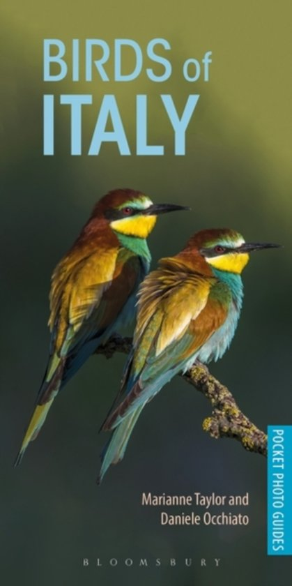 Vogelgids Pocket Photo Guide Birds of Italy | Bloomsbury