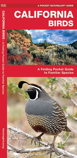 Vogelgids California Birds | Waterford Press