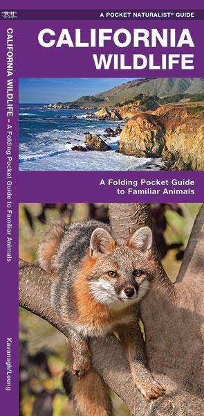 Natuurgids - Vogelgids California Wildlife | Waterford Press