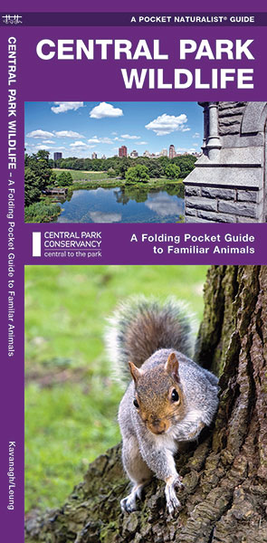 Natuurgids Central Park Wildlife | Waterford Press