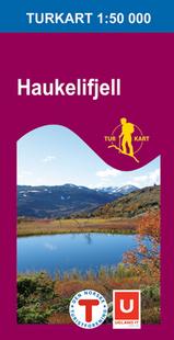 Wandelkaart 2203 Haukelifjell Bykle Suldal Odda Vinje, Topografische Kaart Turkart Noorwegen | Statens Ugland It |