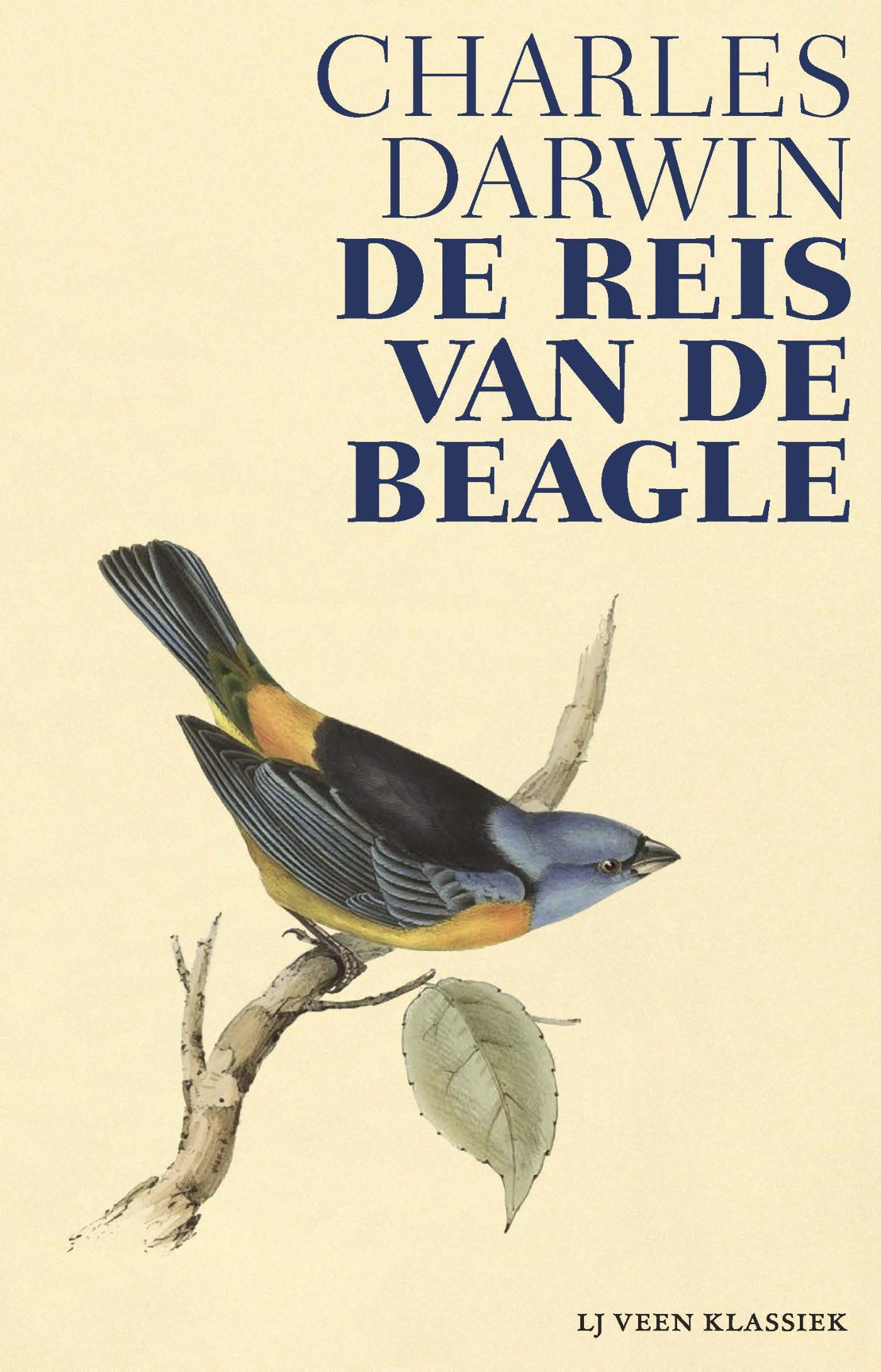 Reisverhaal De Reis van de Beagle | Charles Darwin <br/>€ 17.50 <br/> <a href='https://www.dezwerver.nl/reisgidsen/?tt=1554_252853_241358_&r=https%3A%2F%2Fwww.dezwerver.nl%2Fr%2Fzuid-amerika%2Fecuador%2Fgalapagos-eilanden%2Fc%2Fboeken%2Freisverhalen%2F9789020415650%2Freisverhaal-de-reis-van-de-beagle-charles-darwin%2F' target='_blank'>Meer Info</a>